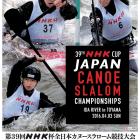 B1_NHKhai_poster